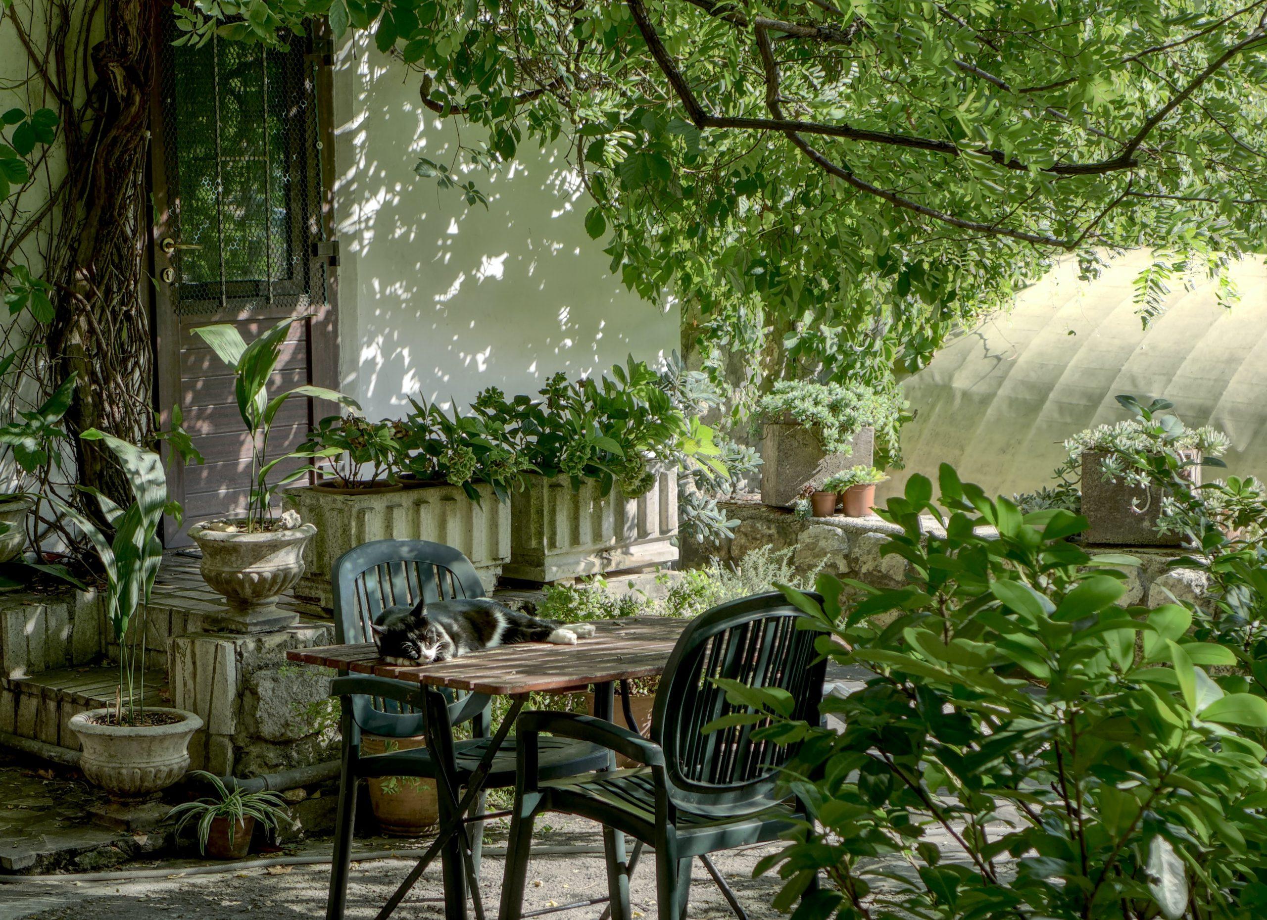 Brug sommerferien på at få styr på hus og have